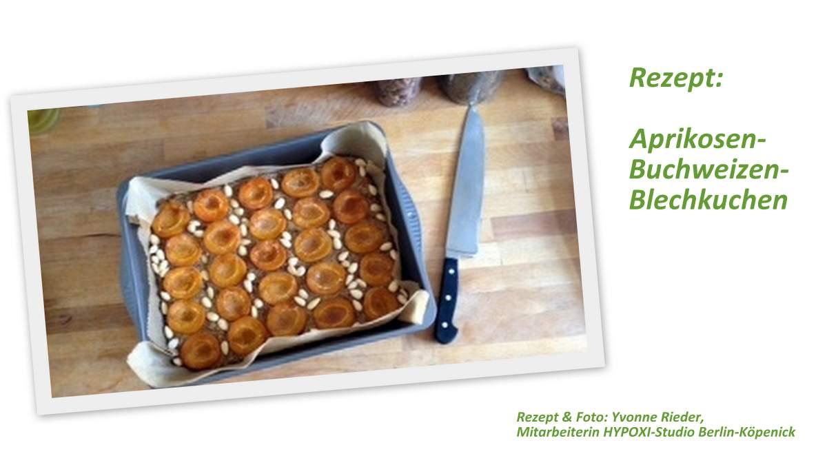 Aprikosen-Buchweizen-Kuchen